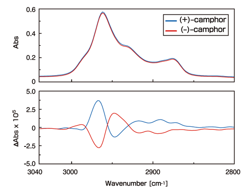 Vibration circular polarization dichroism spectrum of camphor